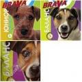 180 BraVa сух для собак
